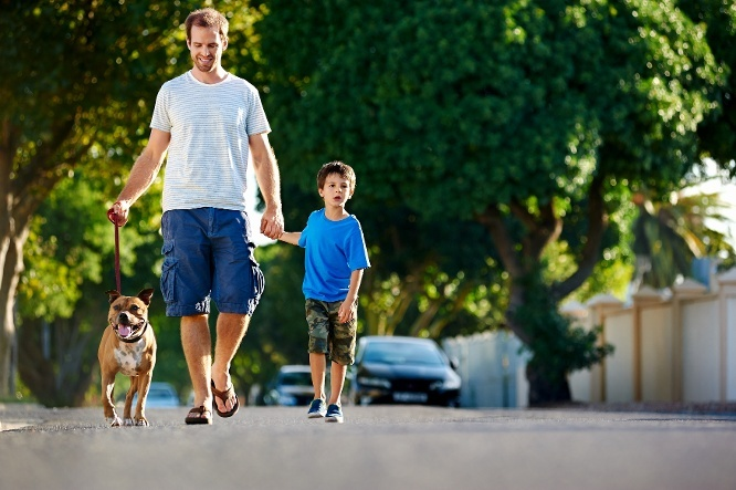 10 Signs You Live in a Truly Special Neighbourhood