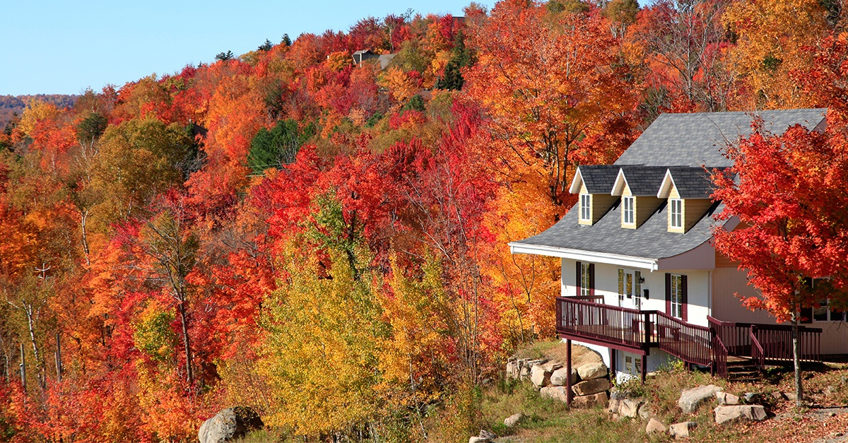 Five Reasons Autumn Is The Perfect Time To Sell Your Property